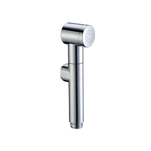 ABS Material Toilet Handheld Bidet Sprayer Head